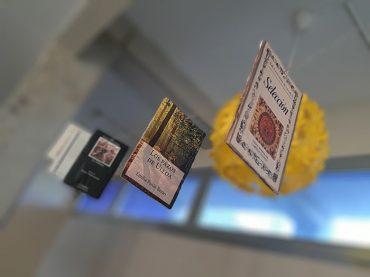 biblioteca-floridasecundaria-9